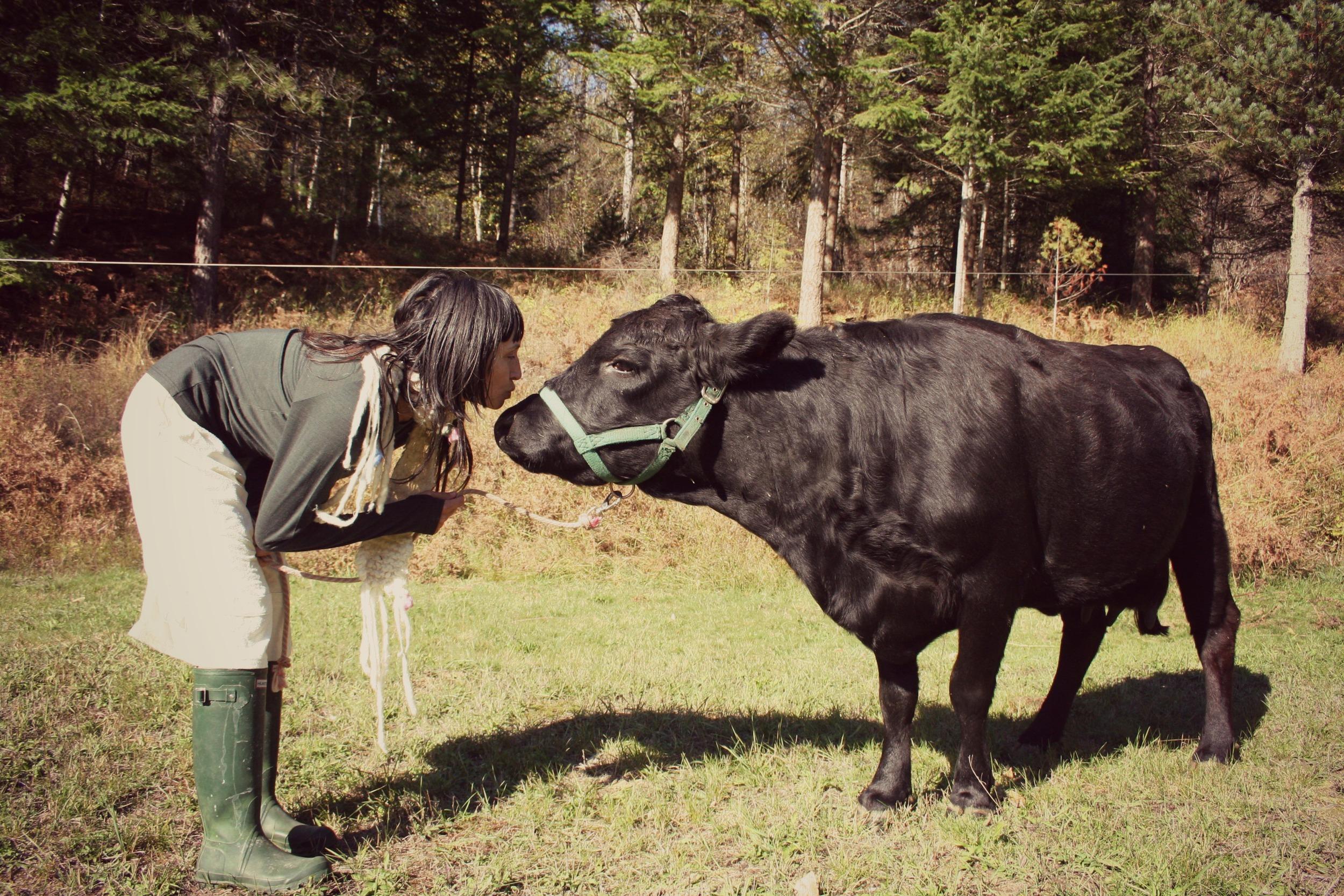 bliss-filled cow kisses.jpg