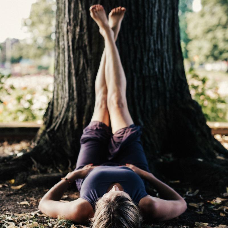 Legs up the Tree .jpg