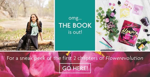 Katie-Hess-Lotus-Wei-Book-Release.jpeg