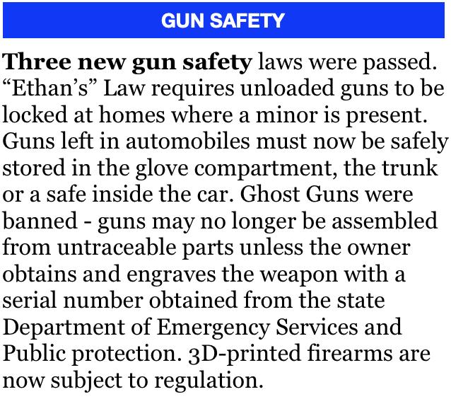 GUN SAFETY.png