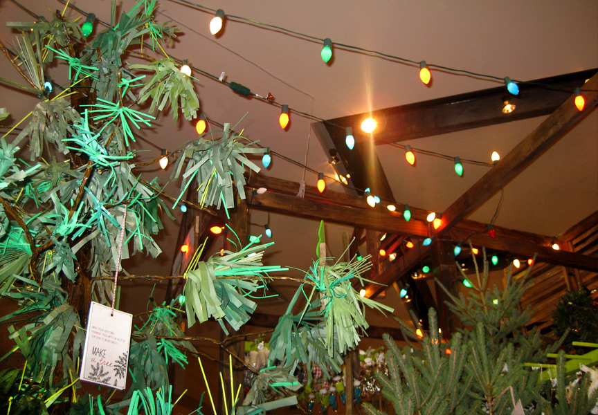 treefarm3.jpg