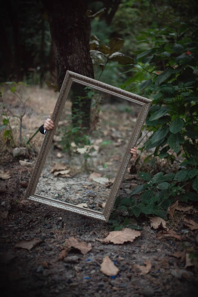 forest-mirror-reflection-1188410 (1).jpg