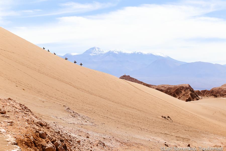 Sandboarding, Atacama Desert, Chile