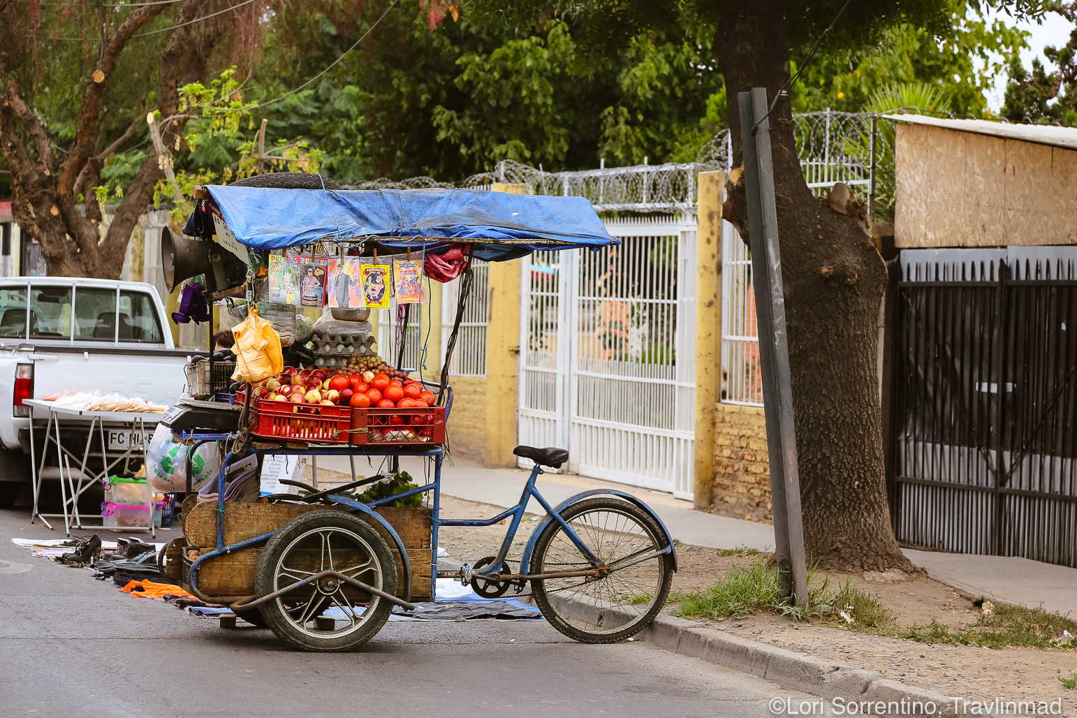 Mobile-market-Santiago-Chile