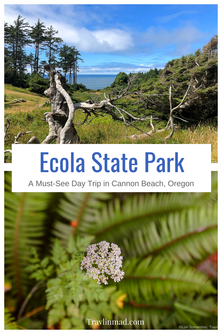 Day trip to Ecola State Park Oregon, Cannon Beach