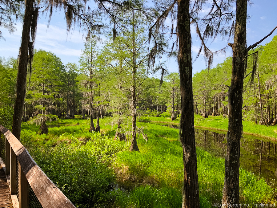 The Tallahassee Museum, Florida