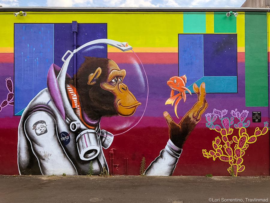Street art in Tallahassee, Florida