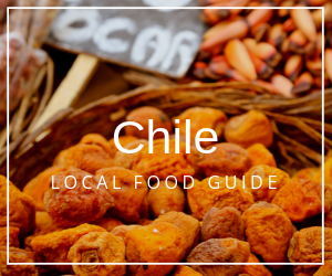 Chile food guide