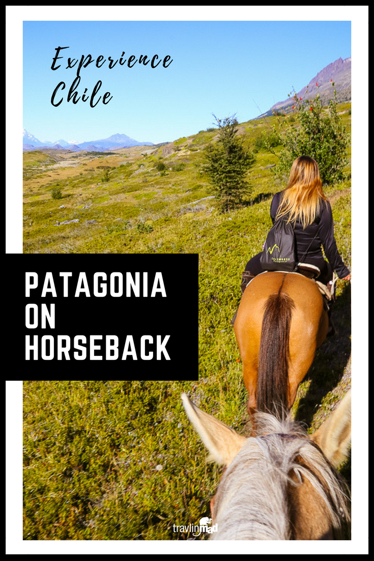 Seeing Patagonia on horseback is one of the coolest ways to trek through the beautiful wilderness in Torres del Paine, Chile. Here's how and where to do it!