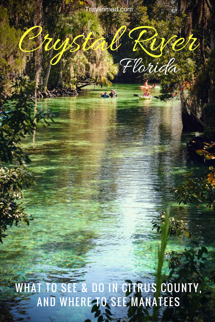 Things to do in Crystal River, Florida