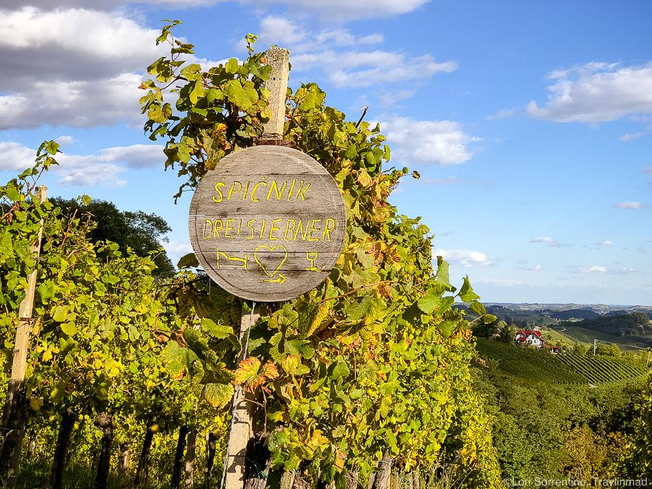 Vineyards, Südsteiermark, Austria