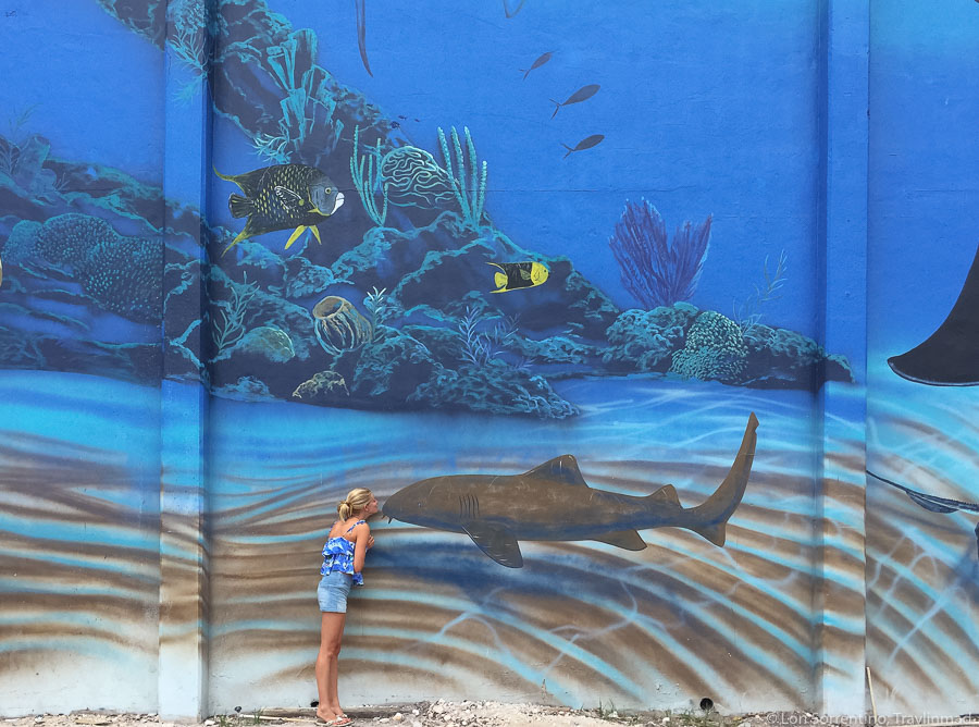 Wyland's Whaling Wall, Key West, Florida