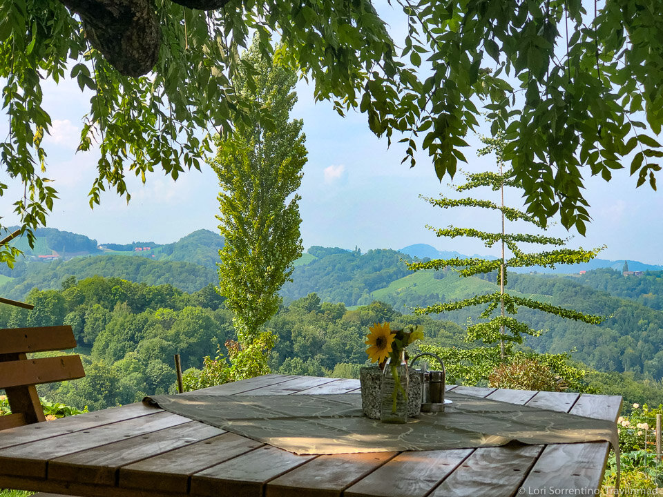 Rolling hills and wineries of south Austria