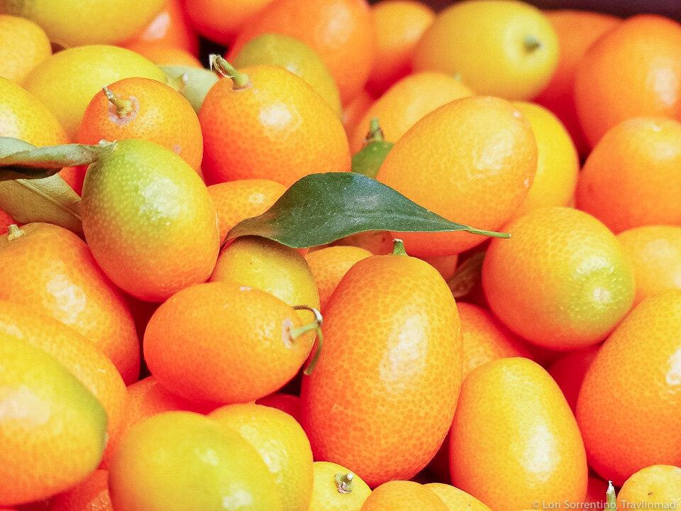 Fresh, tart Kumquats from Florida