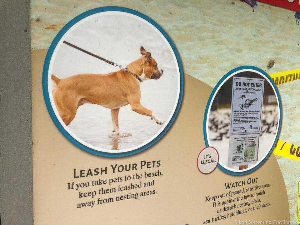 Always keep your dog on a leash on Sanibel beaches
