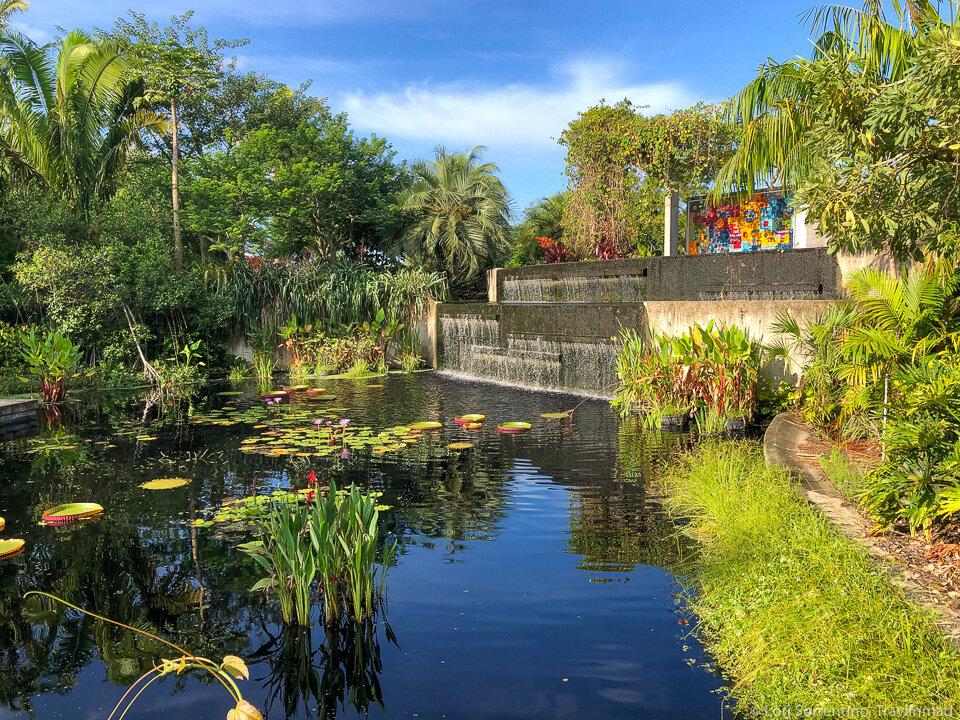 Naples-Botanical-Garden-Naples-Florida.jpg