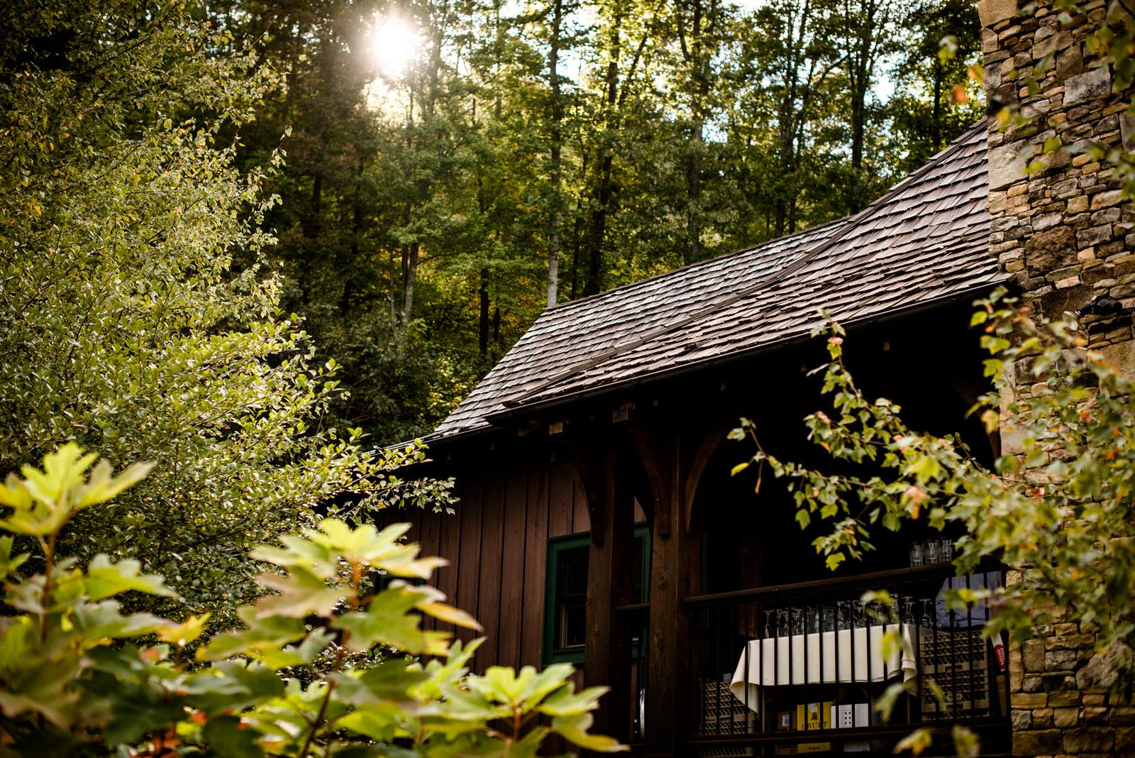 relaxed-backyard-wedding-asheville_Wedding-376.jpg