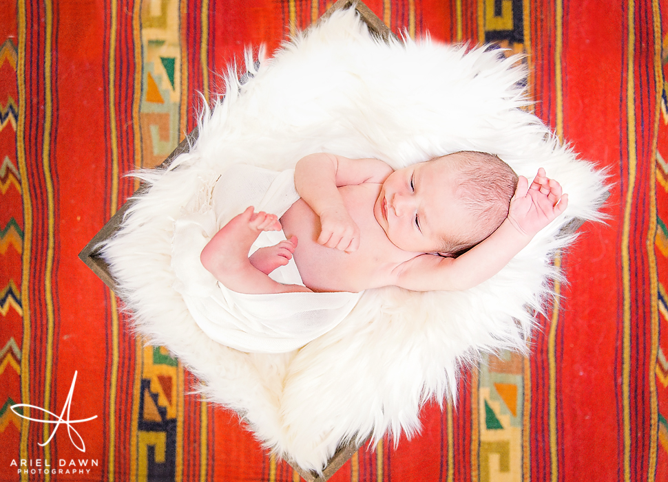 Great Falls Montana Newborn Photography
