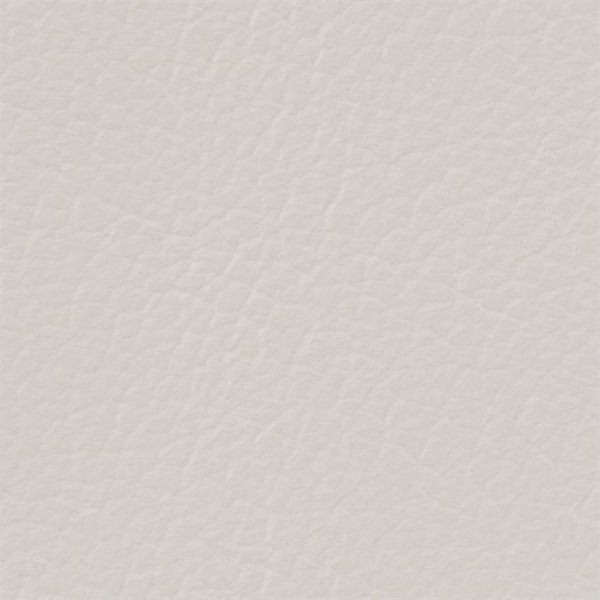 Soft Gray -