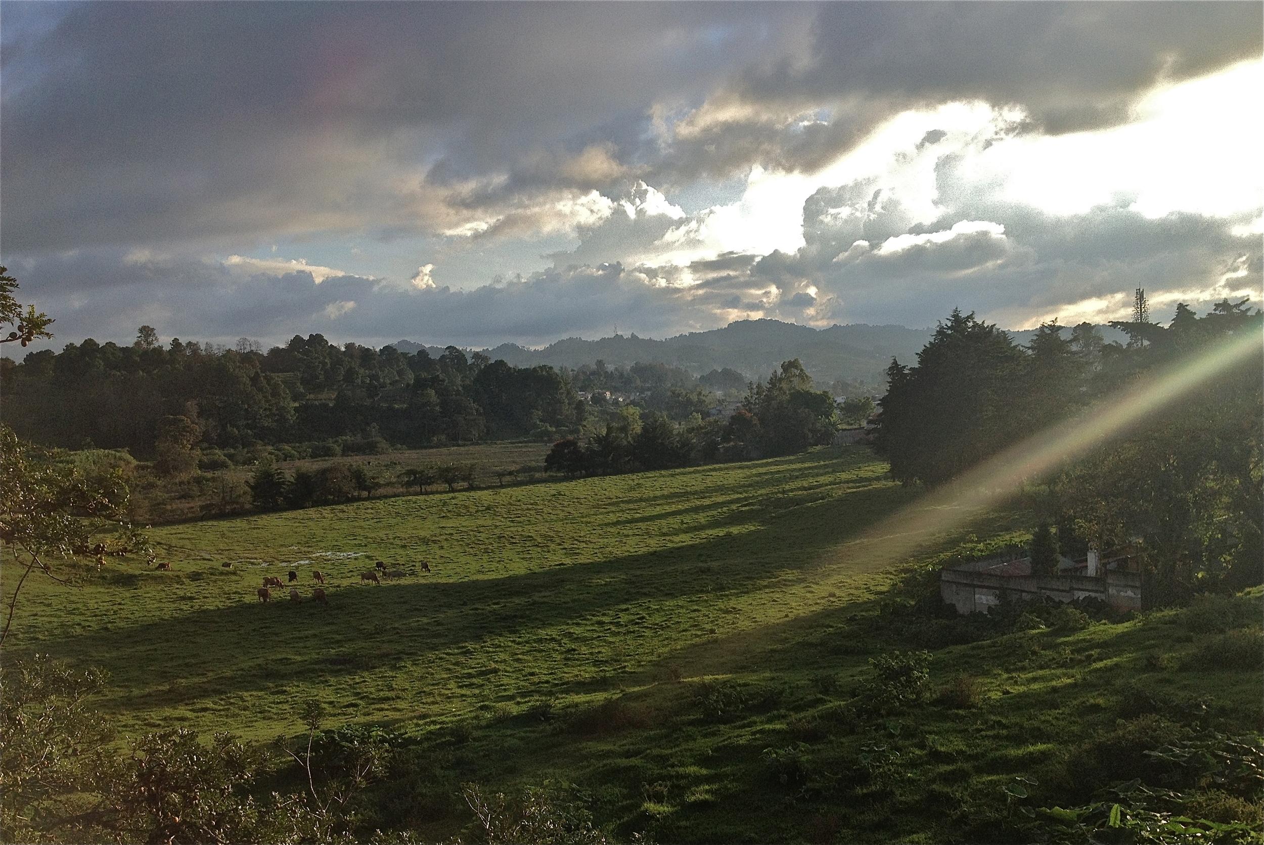 Sunbeams on the fields