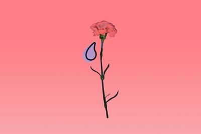 p_flower.jpg