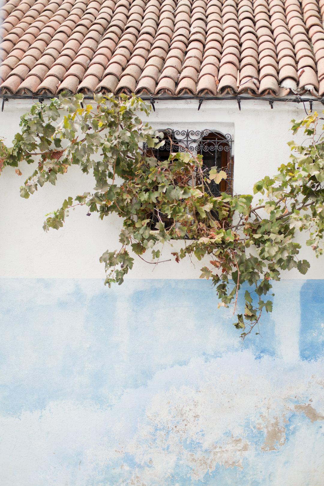Melissa Kruse Photography - Chefchaouen Morocco (web)-79.jpg