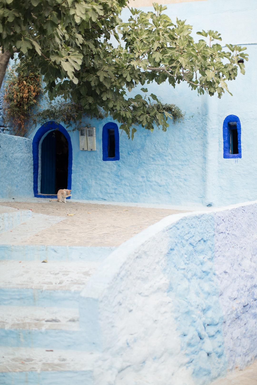 Melissa Kruse Photography - Chefchaouen Morocco (web)-86.jpg