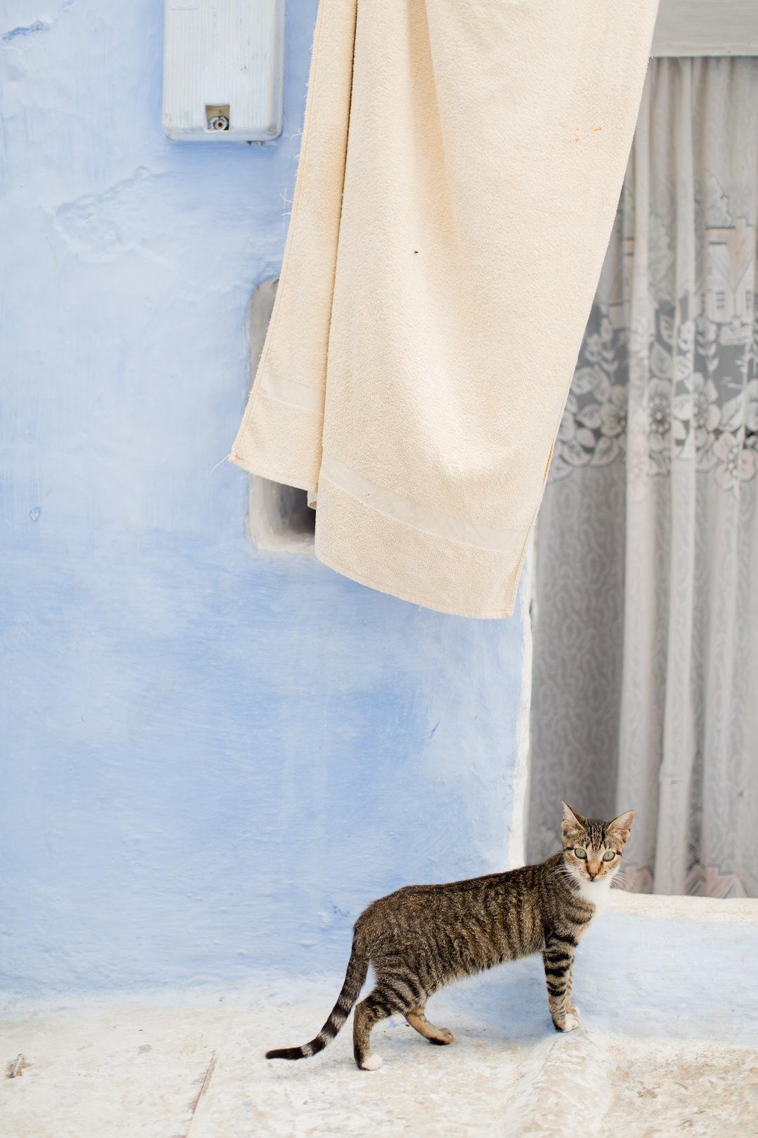 Melissa Kruse Photography - Chefchaouen Morocco (web)-118.jpg