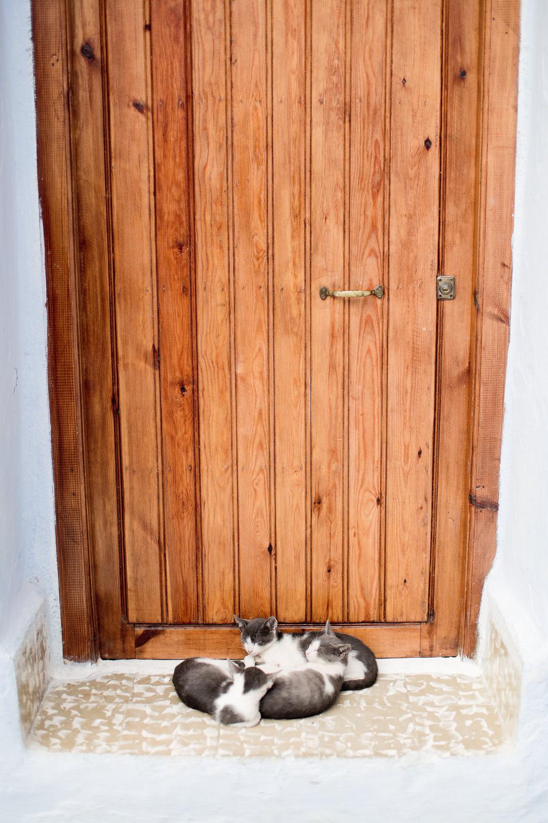 Melissa Kruse Photography - Chefchaouen Morocco (web)-123.jpg