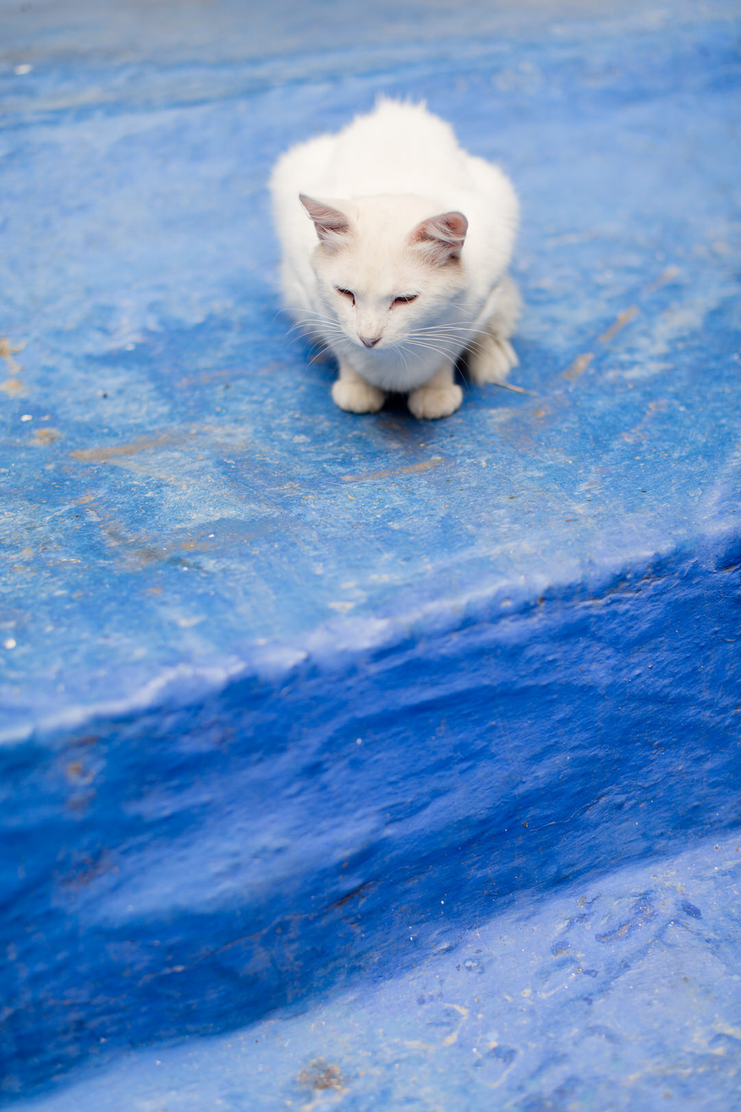 Melissa Kruse Photography - Chefchaouen Morocco (web)-130.jpg