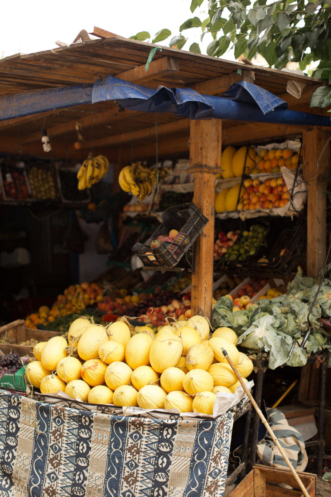 Melissa Kruse Photography - Chefchaouen Morocco (web)-142.jpg