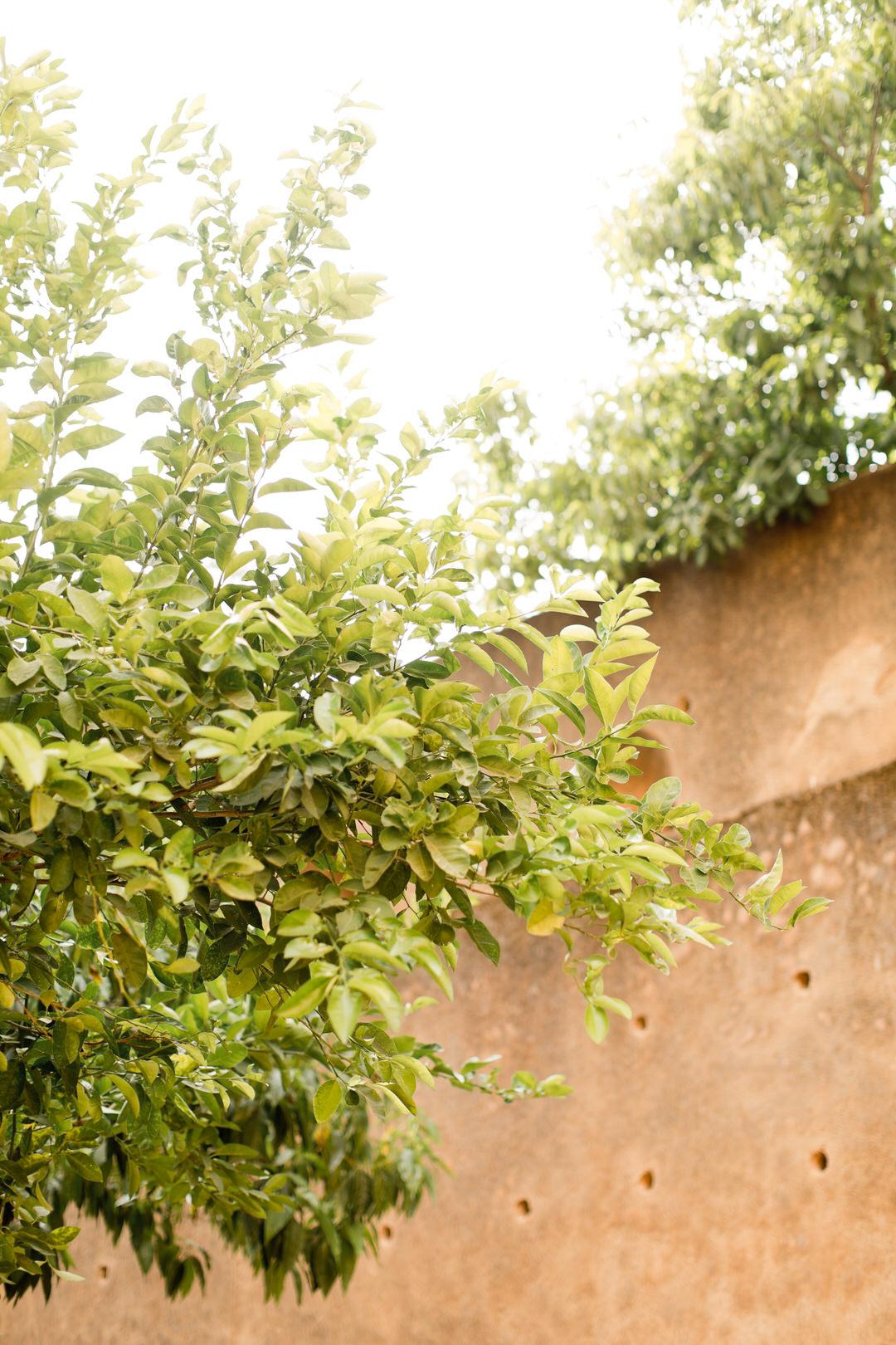 Melissa Kruse Photography - Chefchaouen Morocco (web)-145.jpg