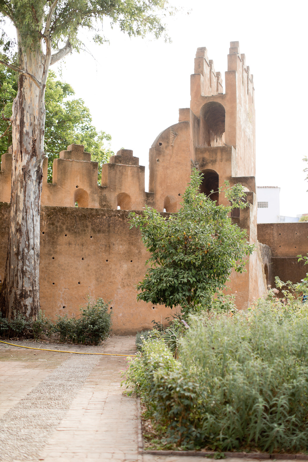 Melissa Kruse Photography - Chefchaouen Morocco (web)-161.jpg