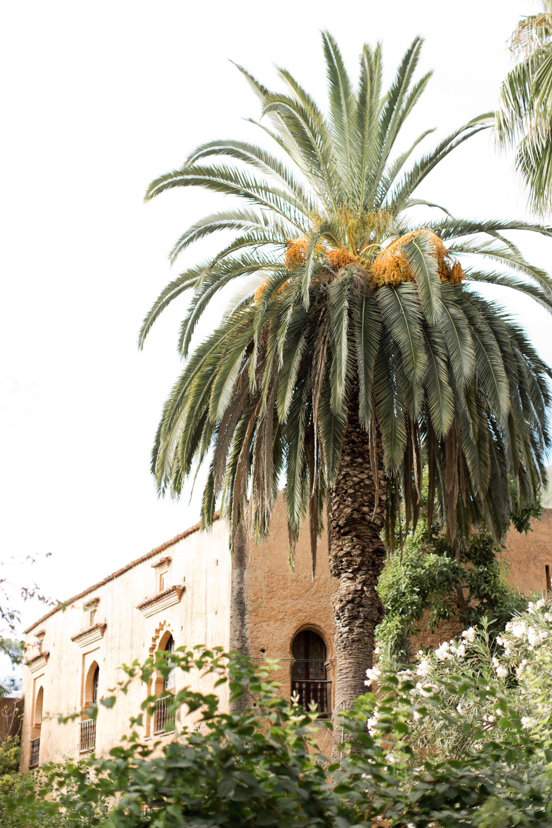 Melissa Kruse Photography - Chefchaouen Morocco (web)-163.jpg