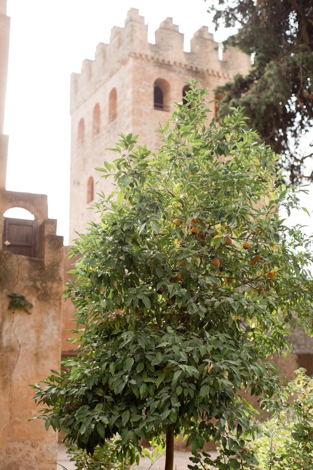 Melissa Kruse Photography - Chefchaouen Morocco (web)-165.jpg