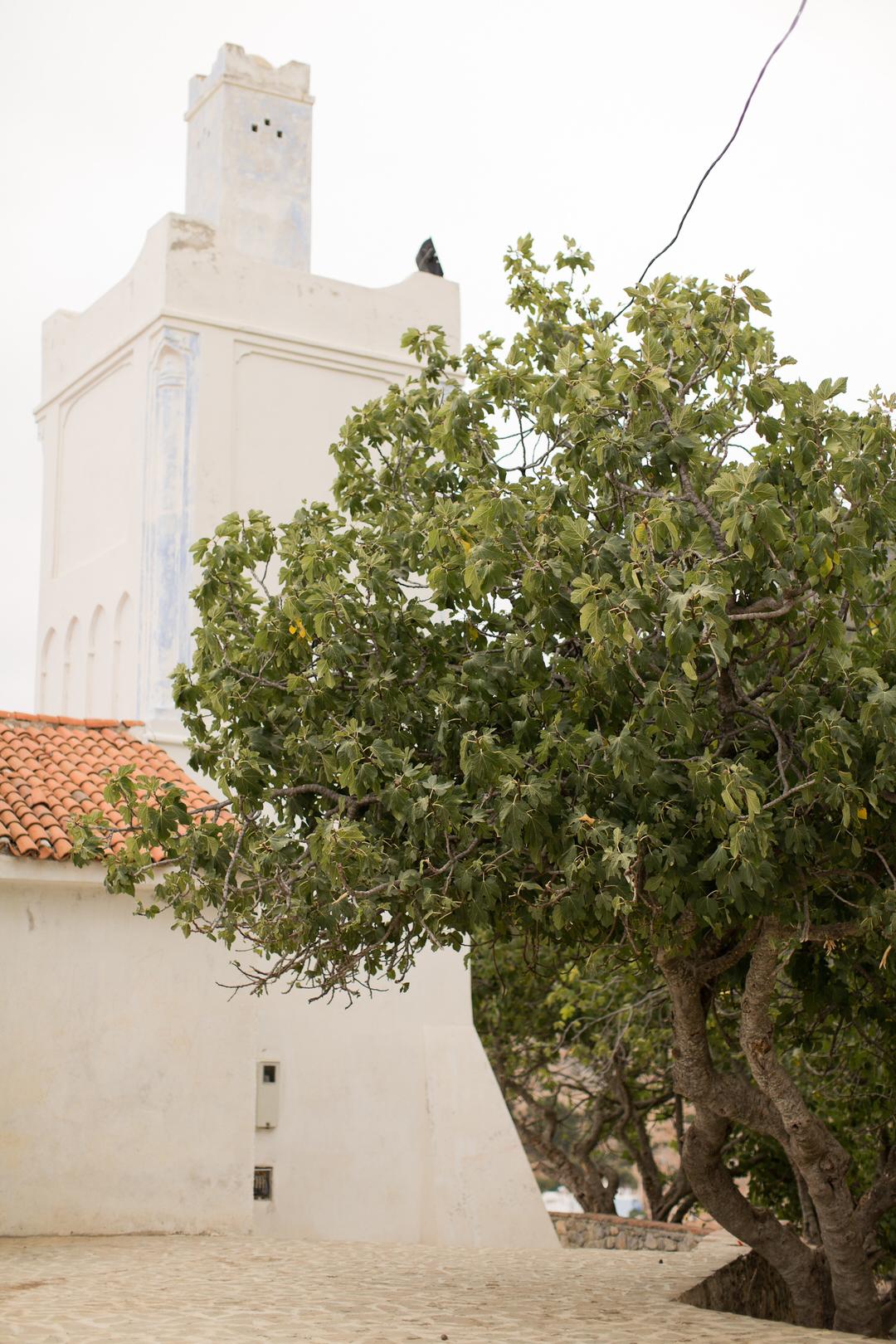Melissa Kruse Photography - Chefchaouen Morocco (web)-196.jpg