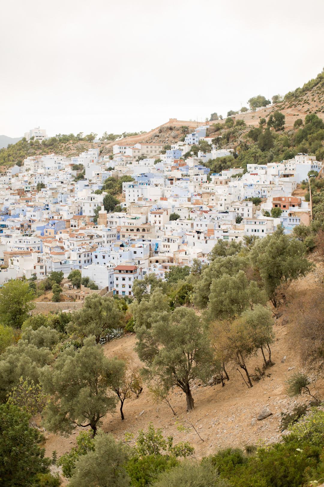 Melissa Kruse Photography - Chefchaouen Morocco (web)-202.jpg