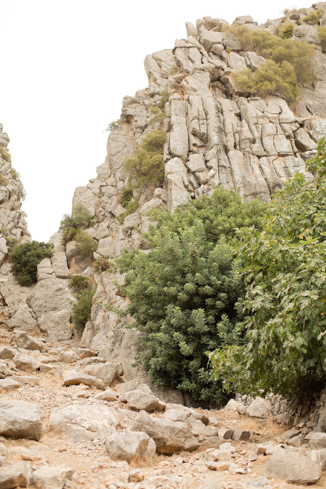 Melissa Kruse Photography - Chefchaouen Morocco (web)-205.jpg