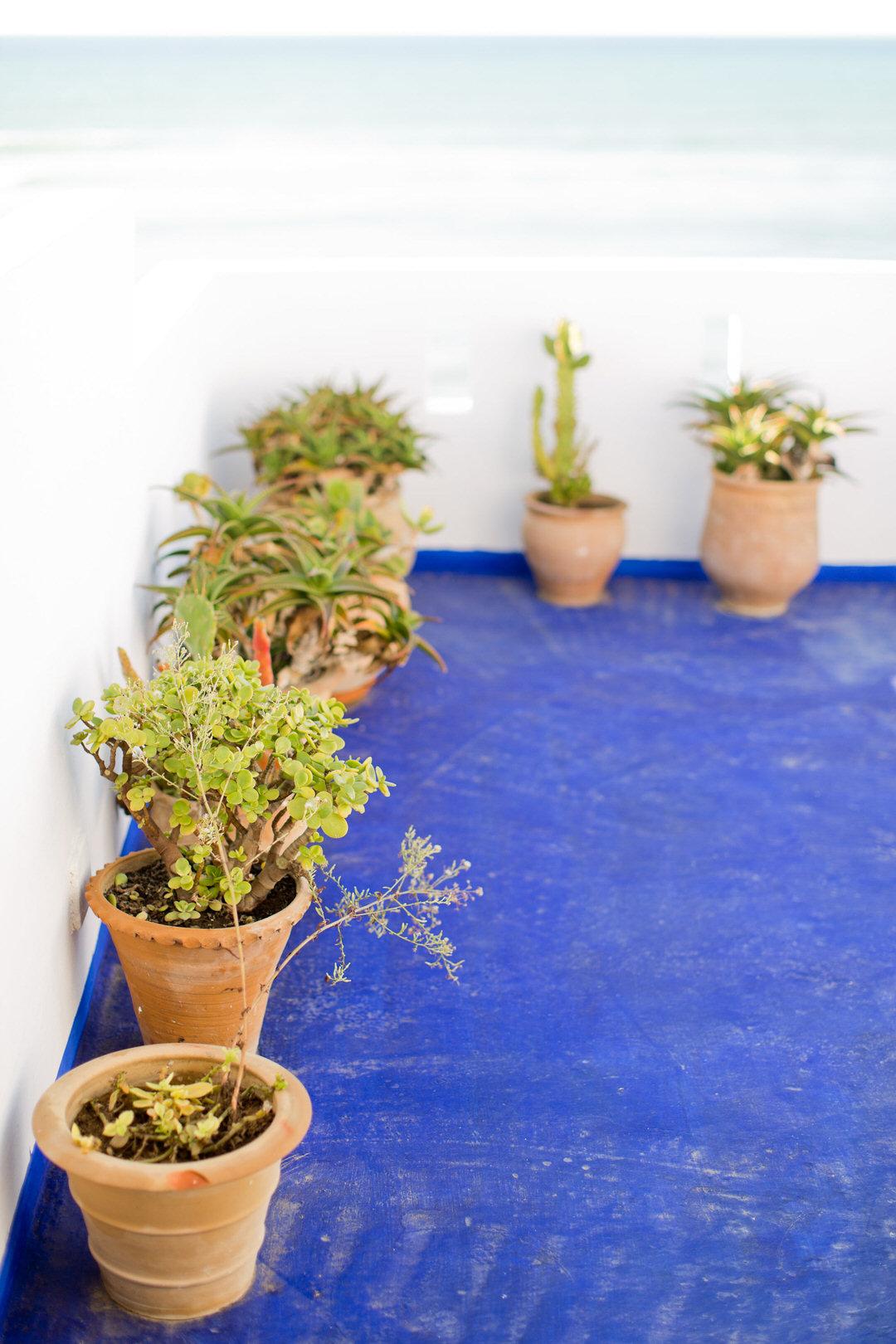 Melissa Kruse Photography - Asilah Morocco (Web)-110.jpg