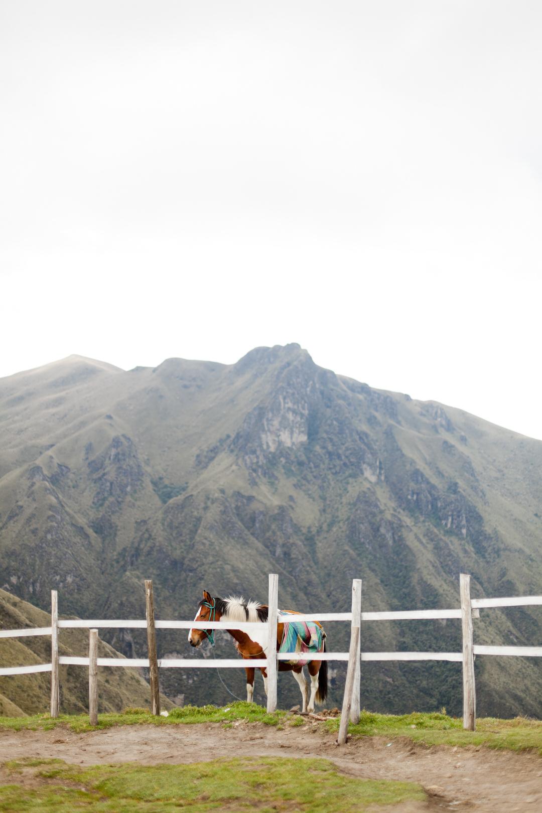melissa kruse photography - quito, ecuador-17.jpg