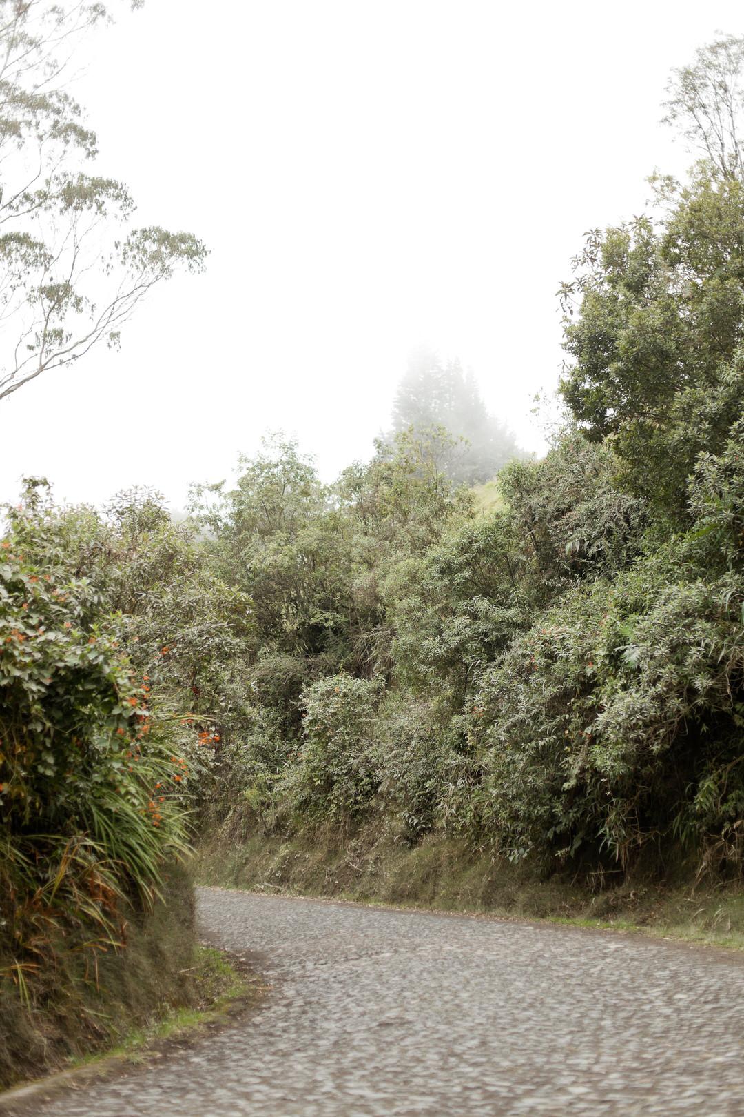 melissa kruse photography - Banos, Ecuador-70.jpg