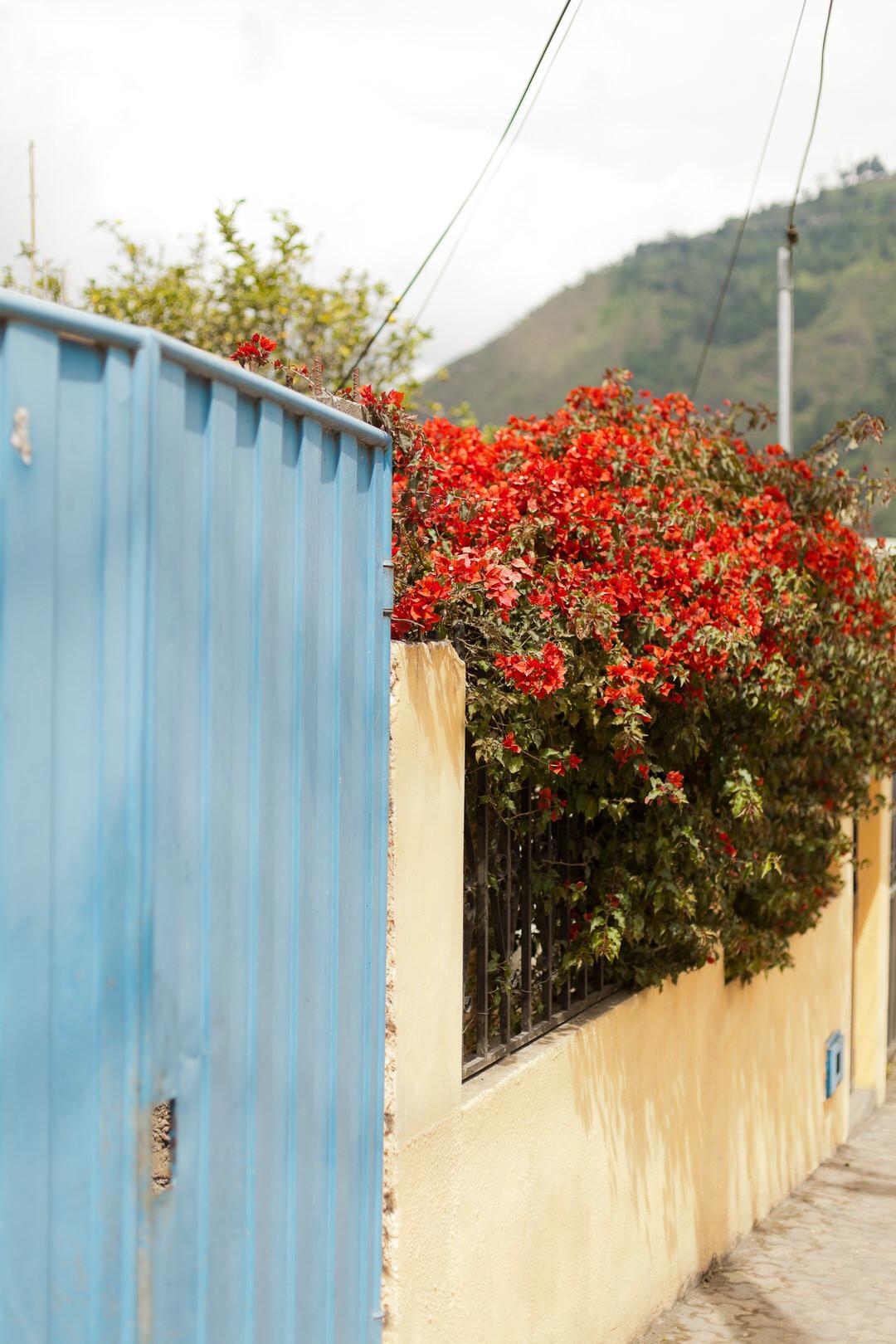 melissa kruse photography - Banos, Ecuador-107.jpg