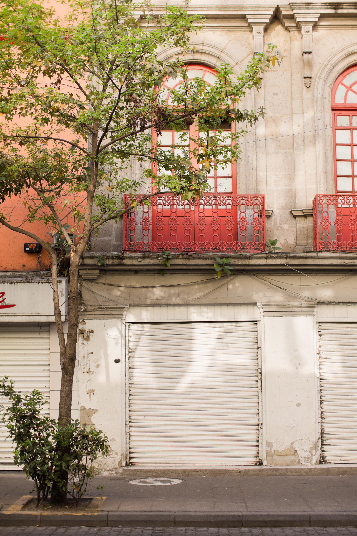 Melissa Kruse Photography - Mexico City (web)-74.jpg