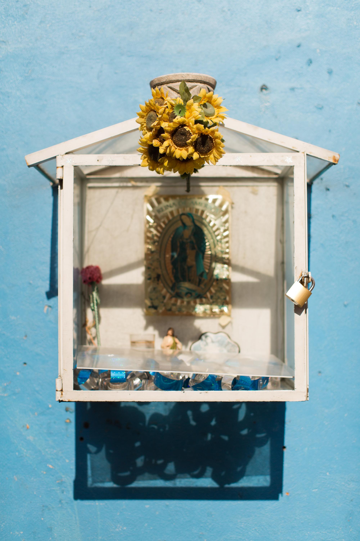 Melissa Kruse Photography - Mexico City (web)-124.jpg