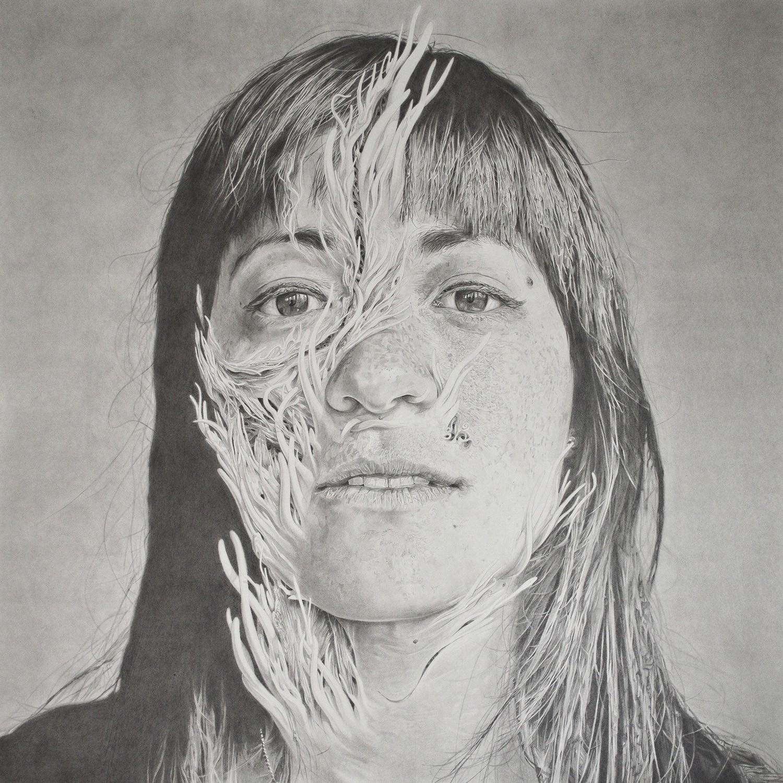 Hana II,  36″ x 36″, Graphite on Fabriano hot press paper