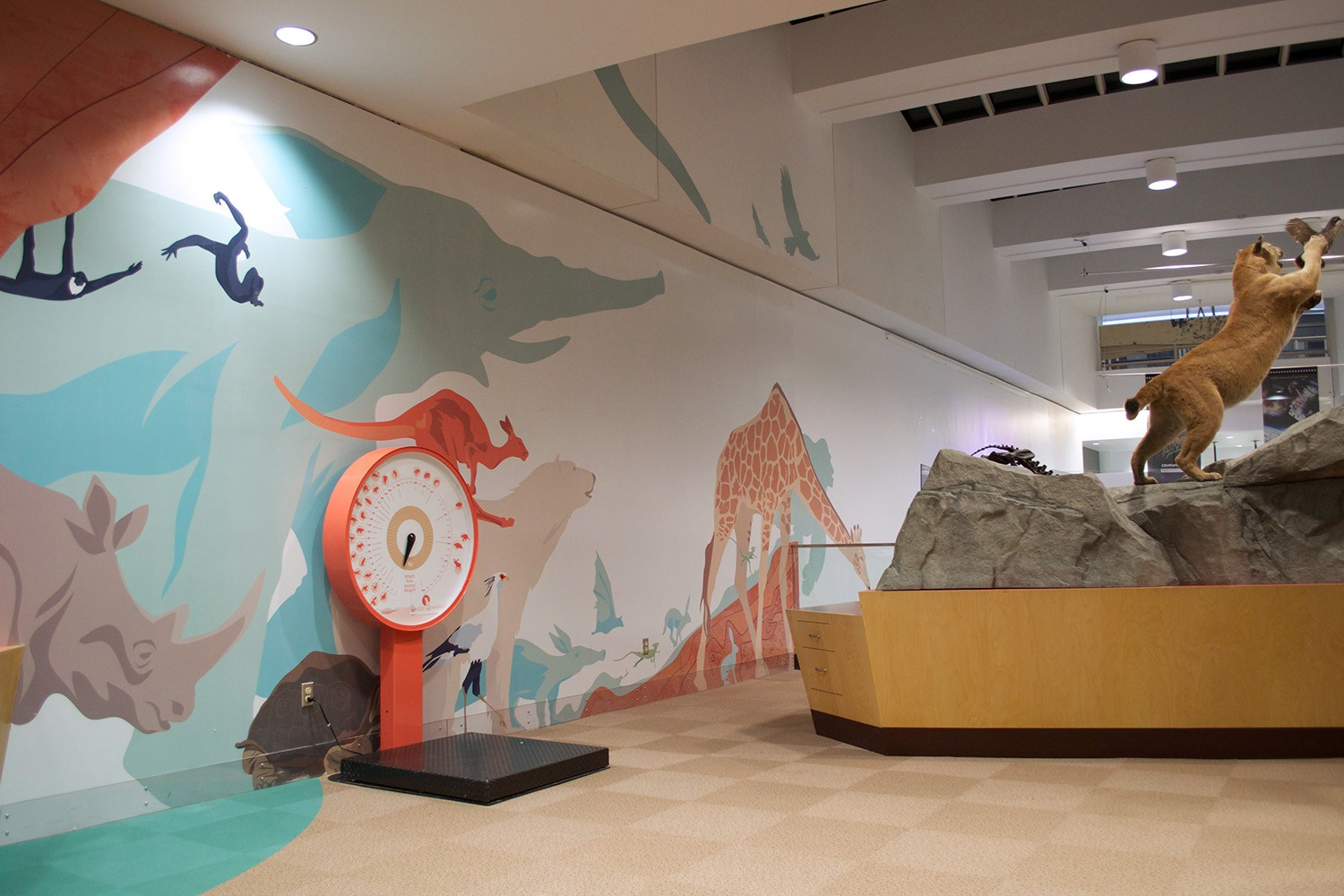 Animal mural I illustrated, at the entrance of the gallery.