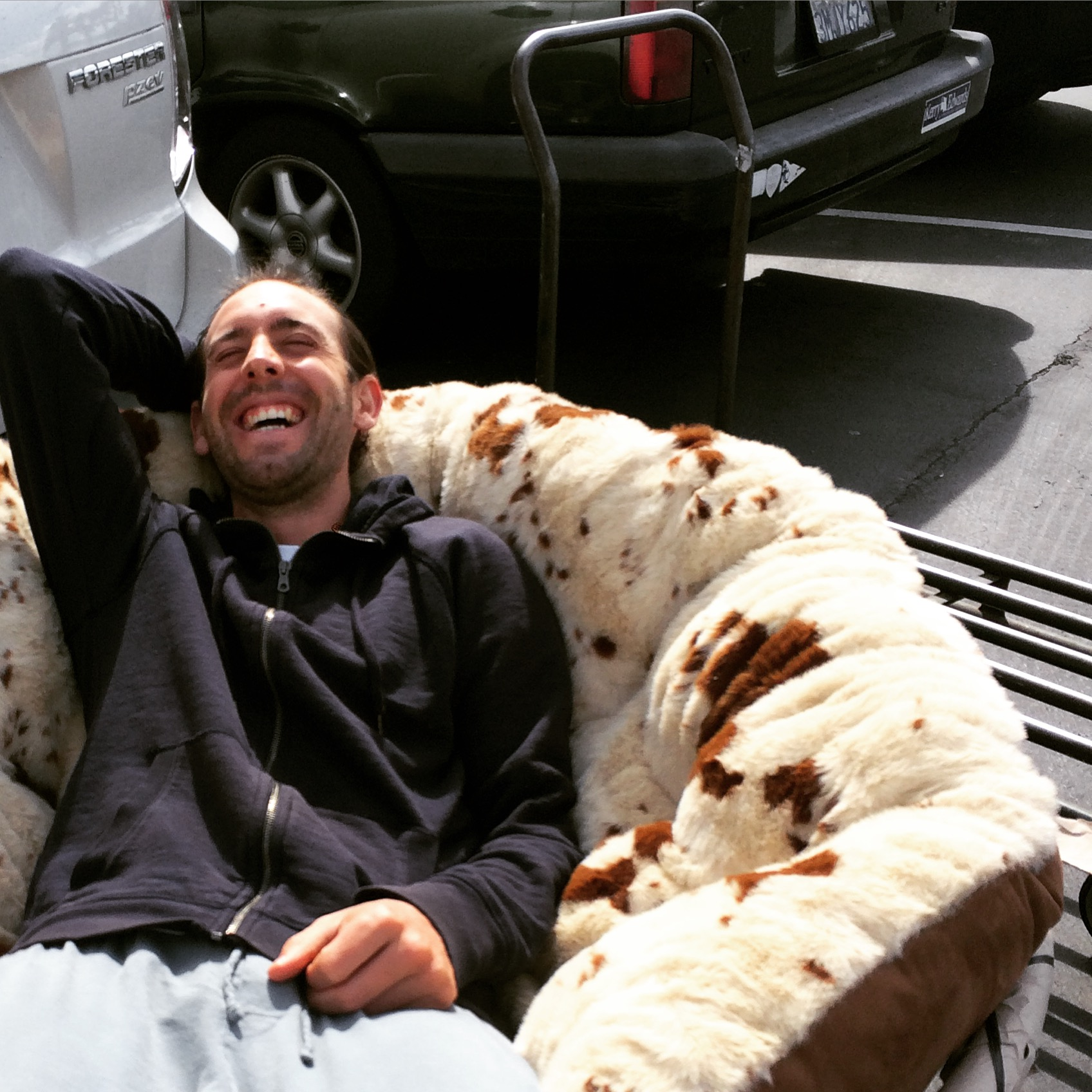 Carl cracking up in the parking lot of World Market as he vetoes my human dog bed purchase :)