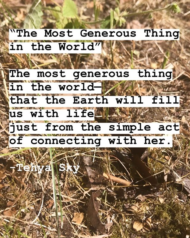The most generous thing in the world— that the Earth will fill us with life just from the simple act of connecting with her. 🌍 * * * #simplethings #earthpoem #poem #poetry #earthpoetry #sufism #sufipoetry #iloveearth #thankyouearth #graciaspachamama #appreciation