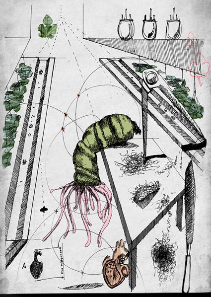 Biophilia_VeronicaRanner_Illustration1.png