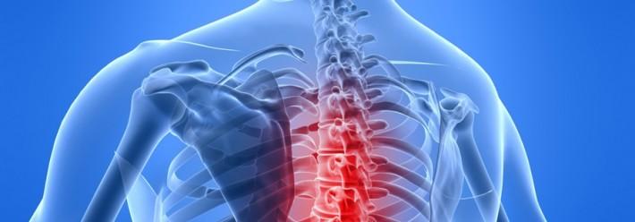 T Spine.jpg